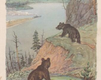 "Signed. V. Frolov ""Bears"" Postcard -- 1959. Condition 6/10"