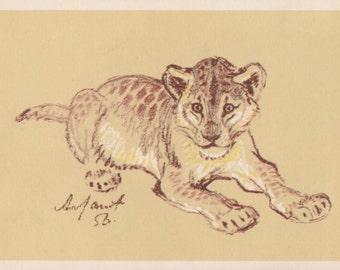 """A. Laptev """"Lion Cub"""" Postcard -- 1956. Condition 9/10"""
