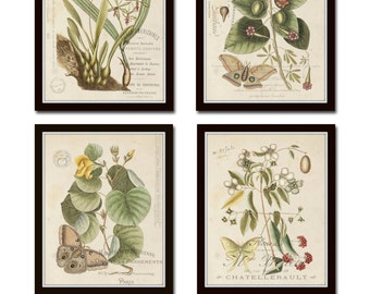 Vintage Butterfly and Botanical Print Set No.1, Giclee, Art Prints, Antique Botanical Prints,Wall Art,Collage,Illustration, Butterfly Prints