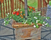 "Kate's ""Country Rustic Umbrella Table Wine Crate Planter"" -- home and living, outdoors and gardening, Patio, garden box"