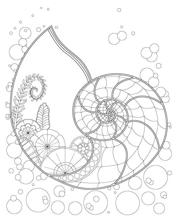 Fantasy Nautilus Shell Underwater Plant Coloring Page for