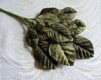 Velvet Millinery Leaves Spray of 18 Deep Moss Green for Hats Weddings Scrapbooking Crafts 7LN0001G2