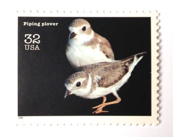 10 Unused Piping Plover Bird Stamps // Endangered Species Bird Postage Stamps // Black and White // 32 Cent Postage Stamps for Mailing