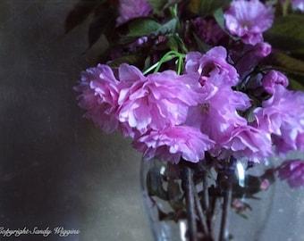 cherry blossom photo,  sakura photograph, spring bouquet, spring blossoms, cherry blossom art, pink blue, 8x10 print