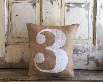 Burlap Pillow - Number Pillow   Personalized pillow   Kids pillow   Baby Month Growth pillow   Milestone pillow