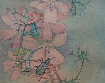 Vintage Original Botanical Flowers and Beetle Insect Watercolor Painting in Wood Frame 1951