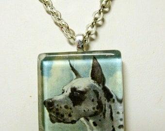 Harlequin great dane pendant and chain - DGP01-076