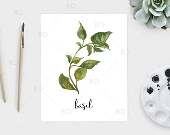 Basil watercolor - PRINTABLE Wall Art / Basil print / Herb printable / Herb print / Herb art / Basil Art / Kitchen art / Kitchen print