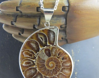 Ammonite necklace, ammonite pendant, real fossil necklace, ammonite fossil, prehistoric necklace,