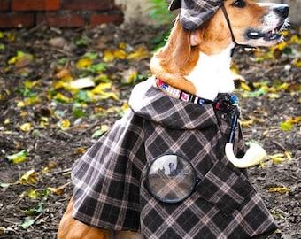 Custom pet costume