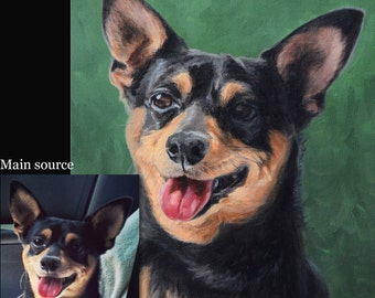 Custom pet portraits, custom dog portrait - oil painting on stretched canvas, from your photographs.