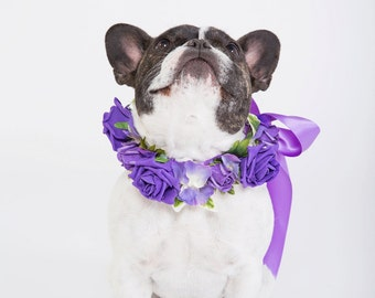 Purple Rose - Flower Dog Collar for Weddings - Purple
