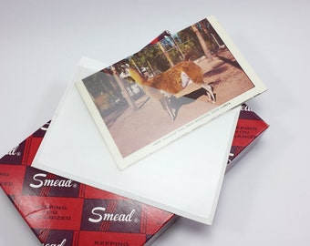 Vintage Self-Adhesive Vinyl Pockets 4x6 by Smead 100