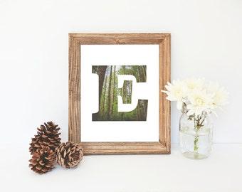 Letter E Printable, E Monogram, Nursery Decor, Trees, Nature Print, E Monogram, Instant Download, Outdoors Name Print, Letter E Art