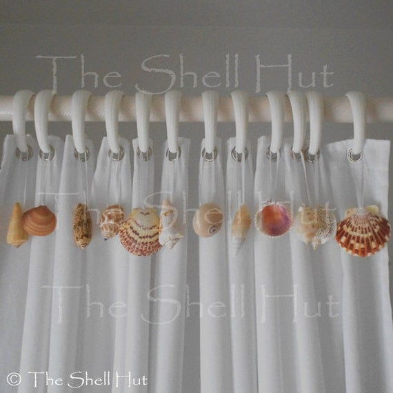 Seashells Shower Curtain Hook Embellishment 12 Real Shells Add