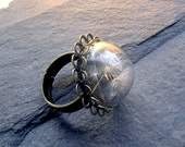 DANDELION RING, terrarium ring, dandelion jewelry, dandelion glass ring, fairy garden, gift for women, make a wish ring