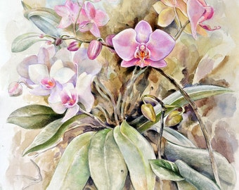 Painting, Flower painting, Watercolor flower painting, Orchid watercolor, Purple and White Orchids, Original painting, Phalaenopsis