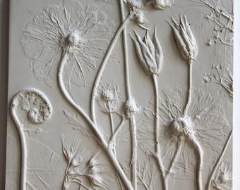 Columbine seed heads, Geum, Fern and Primula