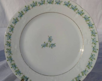 Blue and white floral vintage dinner plate