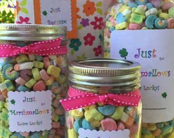 lucky charms 174 marshmallows best selling item gift wrapped