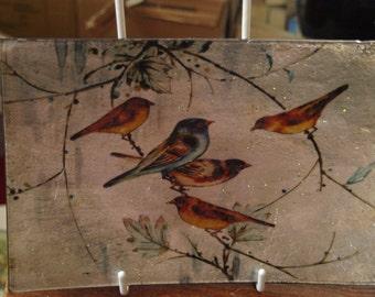Little Birdies Small Rectangle Plate