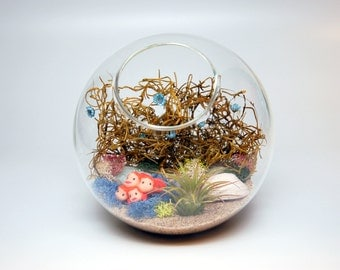 DIY Ponyo Inspired Terrarium Kit with Sea Urchin Shell, Moss, Sand, and More!