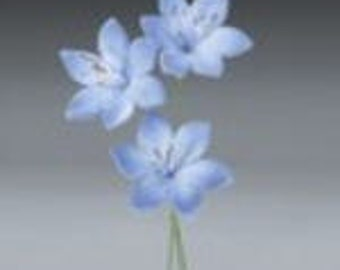 Agapanthus Flower Pre-Made Ready To Use Cake / Cupcake Gum Paste Decorations
