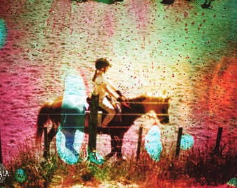 Dissolve into the Journey Psychedelic 35mm film Analog Colorful Dreamy Nature Horse Photo Print