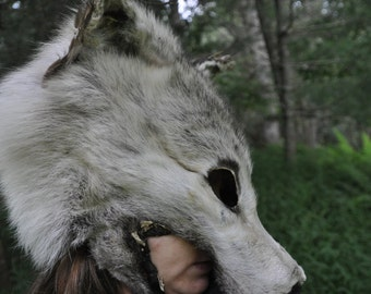 RESERVED For Kate -  Arctic Wolf Shape  Shifter, Dance & Protection SPIRIT-Mask.