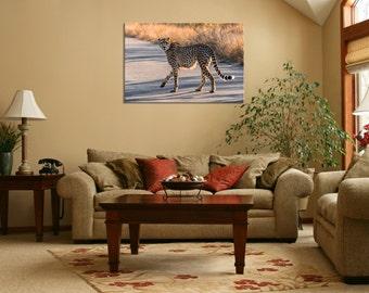 Cheetah, Africa Wildlife, Safari Wall Art, Wildlife Print, Wildlife Photography, Animal Print, Canvas Print, Metal Print, Fine Art Print