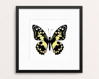 "Butterfly print, butterfly wall decor, girls bedroom decor, art decor, nature print, nature art, 10x10"" 12x12"" with mount"