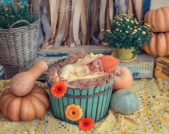 Baby Pumpkin Hat Newborn Knit Hat Knit Pumpkin Hat Pumpkin Baby Boy Photo Prop Baby Girl Photo Prop