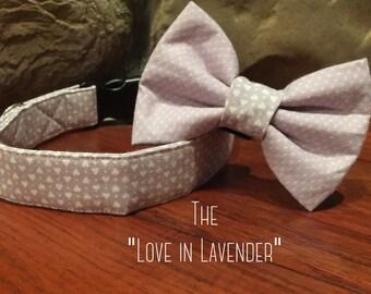 Valentines day dog collar, Dog collar, Valentines collar, Heart dog collar, purple dog collar, collar bow tie, cupid dog collar, lavender