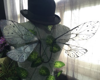 Back Dragonfly Wings - Made to Order