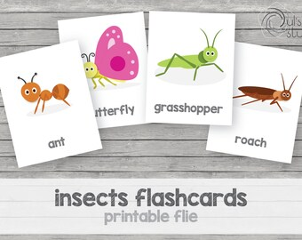 Printable kid's insect flashcards, english