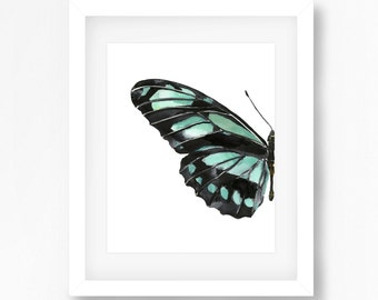 Butterfly Wing 2 print