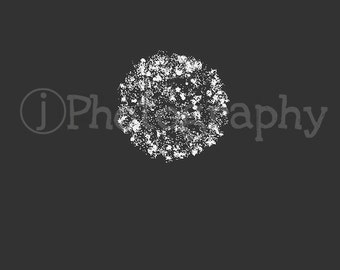 Fireworks Photo (Black & White) Digital Photography