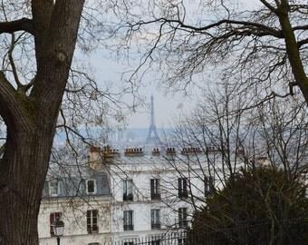 Eiffel Tower Through the Trees - Paris, France