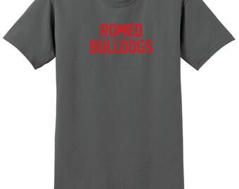 Custom School Name T-Shirt, Custom School Shirt, Sizes S-5XL, Gift for Him, Gift for Her. 2000