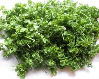 Pepper Cress (select 400=>12,800 seeds) heirloom curled grass pepperwort ST#253