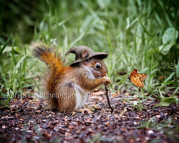 Red Squirrel Print Fantasy Art Print By Abitofwhimsyshop