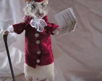 rat taxidermy stuffed naturalized taxidermy rat curiosity odditties