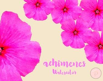 Watercolor Achimenes Flower, Floral Clip art, Watercolor Floral Cliparts, PNG Clipart, floral Cliparts, Instant Download, WCA14
