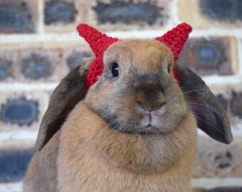 Devil horns headband for bunnies, pet rabbit headband, pet rabbit accessories and clothing, pet rabbit costume, pet halloween costume