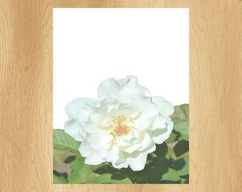 Flower Stationary, Set of 15