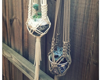 Cotton plant hangers with glass lantern