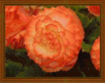 ORANGE BEGONIA Cross Stitch Chart