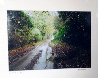 "Country Lane, Quiet Lane, North Norfolk Countryside, Signed Limited Edition A3 Landscape Color Photograph 50cm x 40cm (20"" x 16"") Mount."