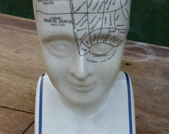 "Extra Large Phrenology Head - 12"" Ceramic - Brand New"