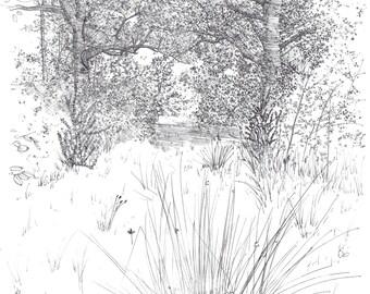 """Drawing """"Great oak"""""""